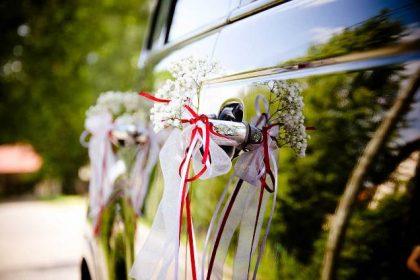 wedding-transfers